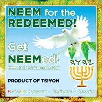 neem_redeemed