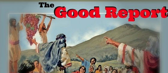 The Good Report – Before the Womb