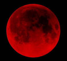 The Blood Moons — What do they mean?