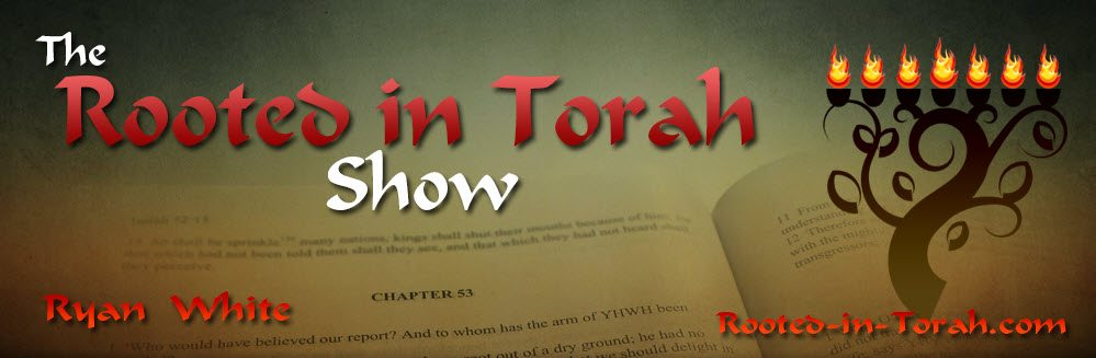 Rooted in Torah  ~ Haftorah VaYigash ~ Ezek 37