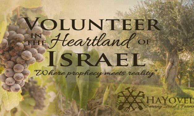 HaYovel – Serving Israel 5 Farmers