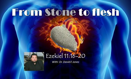 From stone to flesh with Dr David E Jones                                                    Noach and Righteousness