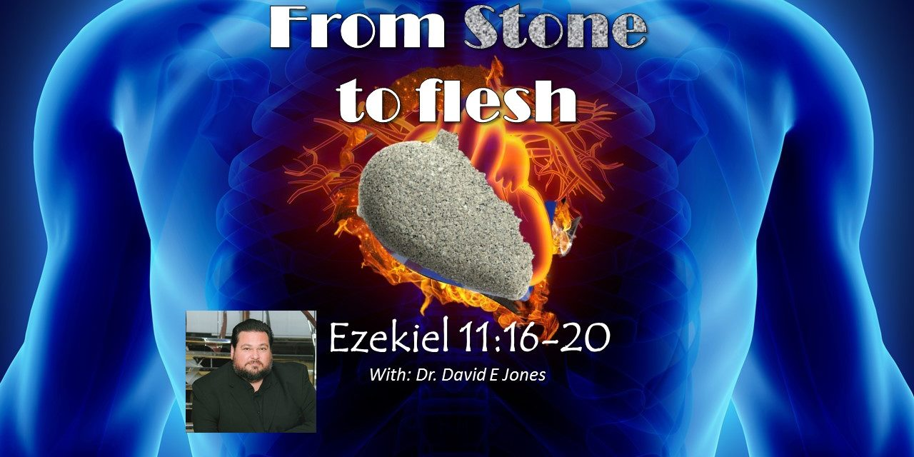 From Stone to Flesh with Dr David E Jones – Coming out of Egypt & the next generation