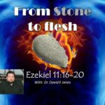 From Stone to Flesh with Dr David E Jones – Chosen and Responsibility