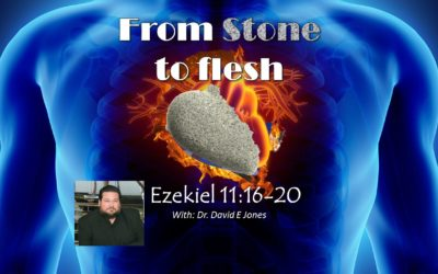 From Stone to Flesh with Dr David E Jones – Silver, Gold, & Stone