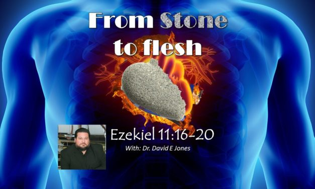 from Stone to Flesh – with Dr David E Jones –   YOU ARE STANDING