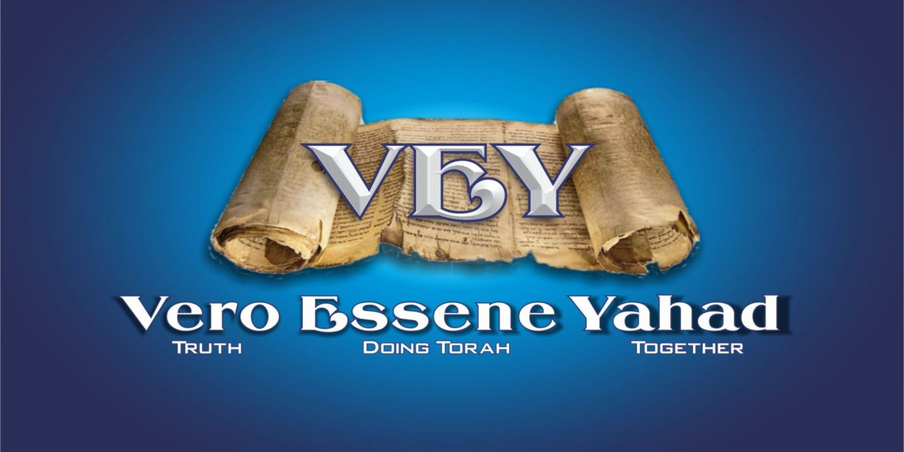 John 7 – Did Jesus Lie?  Make Your Yes, Yes; Your No, No.