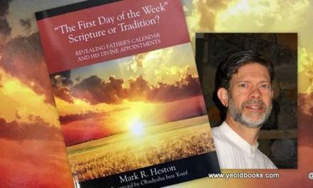 The Detox Whisperer 3 – Next Installment – Mark R. Heston