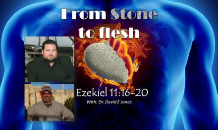 From stone to flesh with Dr David E Jones   Restoration with Hanoch Young