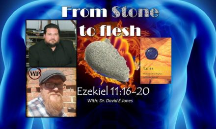 From Stone to Flesh with Dr David E Jones, & Will Spires – T.S.44 the button tree prophet