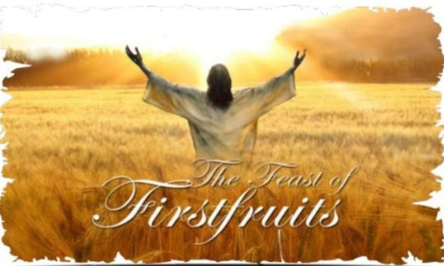 Our Hebraic Heritage ~ Firstfruits ~ Yeshua ~ Firstborn, Priest and King