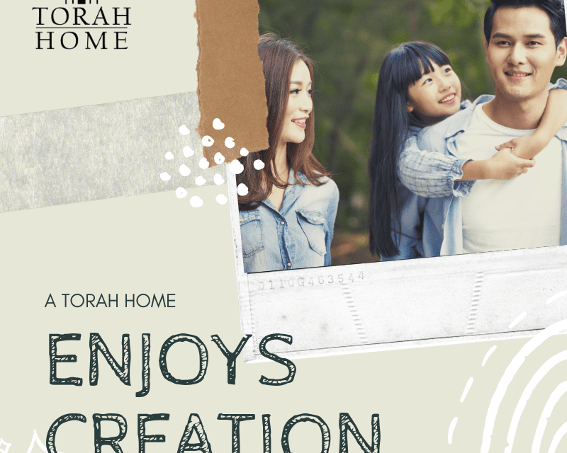 A Torah Home Is a Home That Enjoys Creation